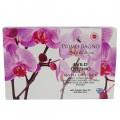 Χάρτινο Σετ Δώρου Wild Orchid 4τμχ Σετ Δώρου